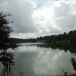 A Beatiful view across Ray Scott's lake.