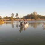 It's a great morning for fishing